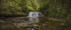 a day with rain (~Fred Wolfe~) Tags: westvirginia waterfalls newrivergorge laurelcreekcottonhill