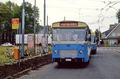 FIAT 017 30 (brossel 8260) Tags: bus belgique fiat gent gand mivg