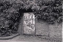 0011 (coloredsteel) Tags: street leica white black self 35mm graffiti stand kodak iso400 f14 trix rodinal developed m6 nokton trainspotting ulm voigtlnder developing trainwriting