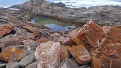 Coastal Pools (Rckr88) Tags: ocean africa travel sea nature water rock southafrica outdoors coast rocks south coastal coastline gardenroute tsitsikamma rockycoastline tsitsikammanationalpark