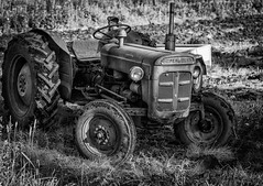 Lets go for a ride with Super Dexta! (TribeChristals) Tags: old blackandwhite bw white tractor black monochrome field outdoor farm vehicle