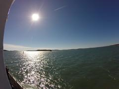 Boston - Observao de baleias (caroline.pedreira7) Tags: boston mar eua viagem turismo oceano baleia