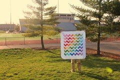 go greyhounds (ellesquare) Tags: rainbow quilt patchwork zigzag fnb konasolids fridaynightbrights