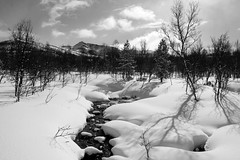 Pske (dese) Tags: winter bw snow primavera blancoynegro nature creek forest easter landscape photo blackwhite spring stream foto noiretblanc natur norwegen natura bn neve april scandinavia pretoebranco forests pske norvegia biancoenero 2012 crosscountryskiing sn landskap noreg dese april6 norwegianwood svartvitt trndelag siyahbeyaz schwarzweis rennebu svartkvitt nerskogen  schwarzweisfotografie desefoto