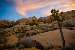 tilted sunset (Eric C Bryan) Tags: sunset landscape nikon day desert cloudy joshuatree filters d700 ericbryan singhrayfilters leegndfilters ericbryanphotography wwwericbryannet ericcbryan ericbryannet