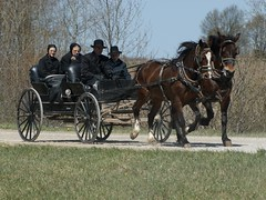 2012-04-22_Team and Carriage (Mark Burr) Tags: holyrood mennonite brucecounty oldordermennonite