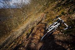 Trail? What Trail? (Torsten Frank) Tags: sport cycling wasser technik trail merida verkehr fahrrad slope cyclocross weg marke pfad edersee rennrad talsperre radfahren crossbike radsport singletrail crosser edertalsperre crossrad anderestichwrter knorreichenstieg cyclocross4d