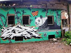 WWF Panda (JuliSonne) Tags: street urban streetart berlin pasteup colors wall graffiti stencil panda tags scene urbanexploration grün wwf mauer verlassen bambus urbex marode tierschutz abrisshaus urbanekunst tierschutzvereinigung