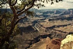 Grand Canyon (4) (Wolfgang Staudt) Tags: arizona usa southwest desert grandcanyon natur wilderness einsamkeit southrim wste lonelyness schlucht wildnis naturwunder euphorie grandcanyonsouthrim usasouthwest