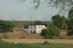 Solitude (World is Beautiful) Tags: village gurgaon haryana