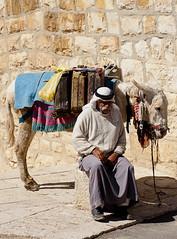 Muslim with a Donkey, Jerusalem, Israel - Mulumano com burro - Jerusalem, Israel (Ilan Ejzykowicz) Tags: gua israel muslim donkey burro  jeruzalem islamic gerusalemme carregando jerusaln   kuds ierusalim herusalem quddus  jeruzslem  jeruzalm  xerusaln oldmuslim watergallons jeruzal         musliminjerusalem muslimoldguy donkeycaringwater mulumanocomburro arabwithdonkey  cherusalem  herusal qds  jeruusalemm jeruzalim iarsailim  yrusalem  jerozolma  yerusalemu orelm
