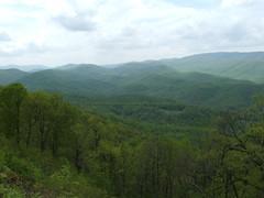 Blue Ridge Mountains. Virginia (Roy Richard Llowarch) Tags: virginia teacher va teachers tutors schoolteacher schoolteachers virginiausa