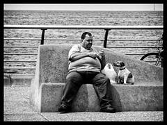 Land of Hope and Glory (Feldore) Tags: sea england food dog man water hope seaside big waiting sitting candid sit wait anticipation blackpool mchugh begging beg hopeful feldore