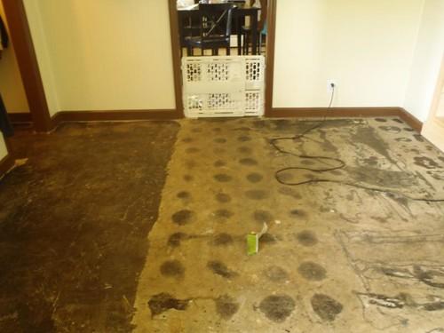 Using Mastic For Floor Tiles Rebellions