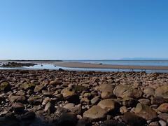 Wreck Beach @ UBC (*_*) Tags: summer sun canada beach vancouver campus university bc britishcolumbia bluesky ubc naturist wreck pointgrey