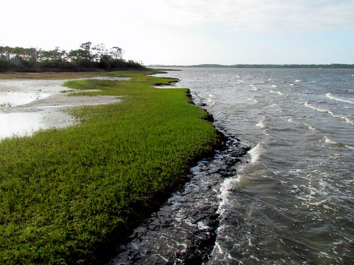 05 Harkers Island NC 9095