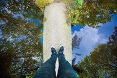 Japanese Garden Clingendael (Tsewang K.) Tags: new japan garden japanese 50mm japanesegarden nikon 14 den nb hague balance 28 nikkor 1500 thehague denhague clingendael 105mm japansetuin solebox d700 1424mm