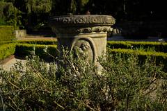 Stone Urn (cutthroatsrule) Tags: urn stone garden