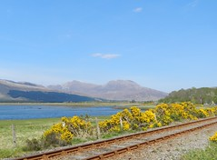 Fuar Tholl (2,976ft), from near Attadale, Wester Ross, May 2016 (allanmaciver) Tags: sleeping man sunshine kyle nose back warm track colours afternoon scenic duke railway wellington loch hazy broom inverness carron gorse fuar tholl allanmaciver