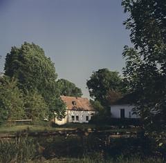 Cellar, garden, cottage, field (verblickt) Tags: film spring fujifilm rolleicord fujicolor loweraustria colornegative