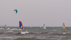Wind surfing in Kamakura (TheSpaceWalker) Tags: ocean sea kite water sport japan photography japanese photo nikon kamakura pic kitesurfing pacificocean windsurfing jpn d300 sigma70200 thespacewalker