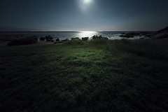 Moonlit seaside (otonasoto) Tags: seascape nightscape sony chiba moonlight shirahama 14mm samyang a7s