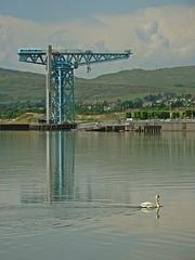 Scale (Bricheno) Tags: reflections river scotland riverclyde clyde swan crane escocia cart szkocja schottland clydebank scozia rivercart cosse kilpatricks titancrane yoker  esccia   bricheno scoia