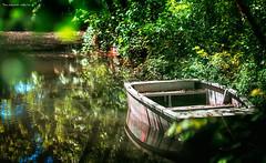 Incanto (Soloross) Tags: park trees light italy parco lake reflection primavera water beauty alberi lago boat spring barca bokeh piemonte acqua piedmont luce bellezza riflesso