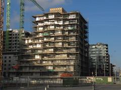 IMG_3280 (Momo1435) Tags: amsterdam zuidas summertime