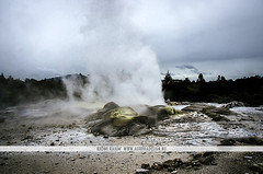 Pohutu Geyser - Rotorua, New Zealand (Naomi Rahim (thanks for 2 million hits)) Tags: rotorua newzealand nz northisland tepuia travel travelphotography nikon nikond7000 nature landscape cloudy pohutugeyser geyser volcanic steam wanderlust geothermal