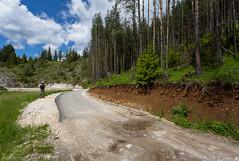 IMG_0839-275 (Martin1104) Tags: fotografie natuur bergen landschap vlinders yagodina snp bulgarije natuurfotografie natuurreis