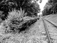 20160701-_7010041 (Richard Brown 56) Tags: railway spa derelict omd em5