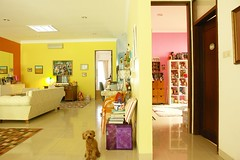 orange yellow pink (girl enchanted) Tags: red dog ikea sunshine puppy toy toys happy mac dolls desk room livingroom collection poodle workroom doggy collectible pup loungeroom dollies toypoodle toyroom pinkroom kartell orangeroom yellowroom poodlepuppy redpoodle dollyroom