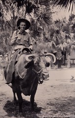 1943 photo showing officer Curtis Strand of the 9th United Army Air Forces, 6th TAC, USAAF in Flordia riding a water buffalo and holding a pistol.  The photo was taken during a break in military maneuvers preparing for the World War II invasion (thstrand) Tags: portrait usa history tourism animal animals soldier us cowboy gun postcard unitedstatesofamerica wwii horns tourist riding worldwarii 1940s american pistol americans soldiers snapshots guns recreation revolver handgun 20thcentury livestock domesticanimals rider chaps waterbuffalo 1943 flordia secondworldwar firearms clowningaround sanpshot wildbill usaaf historicphoto traveldestinations historicalphotograph photographybusiness unitedstatesarmyairforces curtisstrand 9tharmyaircorps armsandarmaments