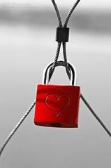 love lock - Liebesverschluß (MR-Fotografie) Tags: red color rot love 50mm see nikon key heart lock nikkor herz liebe 18d d90 bitterfeld goitzsche pegelturm perfectx mrfotografie