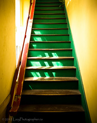 Stairs in green (The Lazy Photographr) Tags: street city urban toronto canada green yellow stairs tamron1750mmf28 canont2i topwrdqe