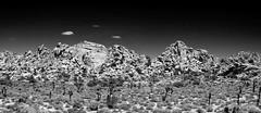 rock face (Benzadrine) Tags: california ca bw face cali stone composite desert joshuatree formation highdesert granite rockclimbing hiddenvalley climbers joshuatreenationalpark bigburrito greatburrito