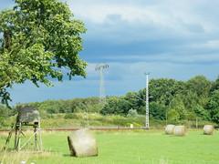 windy 326 (lilli2de) Tags: trees sky clouds germany landscape meadow wiese himmel wolken windy landschaft bume windig niederlausitz elbeelster landbrandenburg 21juli2012
