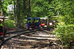IMGP6360 (geepstir) Tags: car reading pennsylvania rail pa shamokin speeder sunbury narcoa