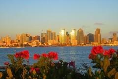 San Diego Skyline (Anna Sunny Day) Tags: sandiego harborisland sandiegoskyline clevelrestaurant