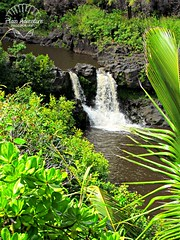 seven sacred pools (Plain Adventure) Tags: hawaii maui sevensacredpools oheogulch haleakalanationalpark