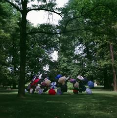 The Gathering / Die Zusammenkunft (lichtbildner_cgn) Tags: tree art forest germany deutschland kunst cologne kln mat 124g wald yashica baum nordrheinwestfalen regenschirm northrinewestphalia