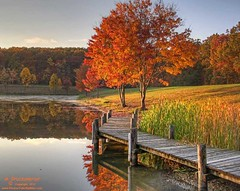 Greenbrier Lake, Boonsboro Maryland (PhotosToArtByMike) Tags: autumn trees mountain lake tree fall landscape pier fishing md woods scenic maryland foliage westernmaryland appalachianmountains washingtoncounty greenbrierstatepark greenbrierlake boonsboromaryland