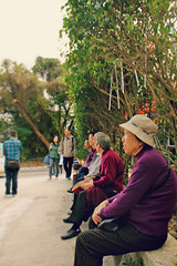 oldladies (janoski006) Tags: china new old city travel grandma people urban horse orange tree leaves festival tangerine relax asian person asia sitting good year chinese grandpa fortune hong kong destiny luck sit wishes older wait lunar wishing