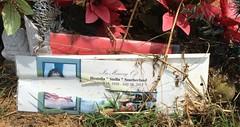 Southerland Grave Marker (eloisedv) Tags: oklahoma cemetery gravemarker cartercounty lonegrove