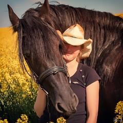 Kathleen und Ferdinand (Michael Lumme) Tags: portrait horses horse feld pony shooting pferde raps pferd friesen acker rapsfeld friese rapsblte rapsknospe