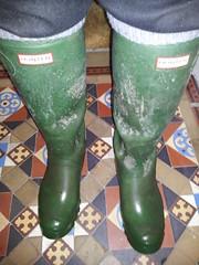 20160407_090854 (rugby#9) Tags: tiledfloor floor tiles wet wetboots dirtyhunters dirtyboots dirtywellingtons dirtywellies rubber boots rubberboots wellingtons wellies green hunters size8 8 buckles hunterboots indoor muddyboots muddyhunters muddyhunterboots socks bootsocks grey greybootsocks greysocks jeans
