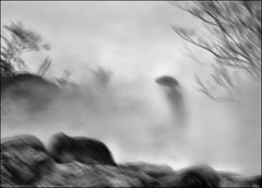F_DSC5832-3-BW-5-Nkon D800E-Nikkor 28-300mm-May Lee  (May-margy) Tags: bw blur silhouette fog umbrella rocks bokeh taiwan trail protrait  raining              repofchina thcik  newtaipeicity maymargy nikkor28300mm  nikond800e maylee  mylensandmyimagination  naturalcoincidencethrumylens  linesformandlightandshadows 1fdsc58323bw5 streetviewphotogaphytaiwan