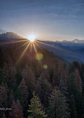 Morning Sunshine (sochhoeung) Tags: trees sun mountains nature forest sunrise nationalpark sequoia sequoianationalpark valleys gianttrees