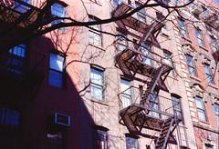 Manhattan Angles (ericaparsnip) Tags: nyc newyorkcity urban ny newyork film architecture brooklyn analog 35mm nikon kodak manhattan angles 135 nikkor portra nikonfm2 fm2 urbanlandscape urbanphotography 50mmf18 c41 portra400 homedevelopment canoscan9000f